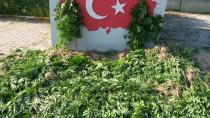 Jandarma Uyuşturucuya Darbe Üstüne Darbe Vuruyor