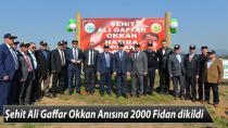 Şehit Ali Gaffar Okkan Anısına 2000 Fidan dikildi