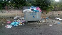 Bayraktepe Mahallesi Sakinlerinden Konteynır Talebi