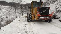 Hendek'te karla mücadele başladı