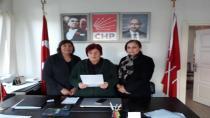 CHP Hendek Kadın Kollarından TBMM'de Kadınlara Yönelik Davranışa Protesto Açıklaması