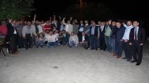 Bülbül;Türkiye kenetlenmeli