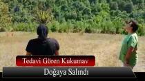 Tedavisi Biten Kukumav Kuşu Doğaya Salındı