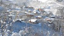 Hendek'in Zirvesinde Hamsi Festivali Düzenlenecek
