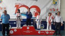 Hendek'li Karateciler Geyve'de Fırtına Gibi Esti
