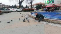 Amigo Fatih Kuşları Yemsiz Bırakmıyor