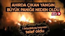 Ahırda çıkan yangın büyük paniğe neden oldu